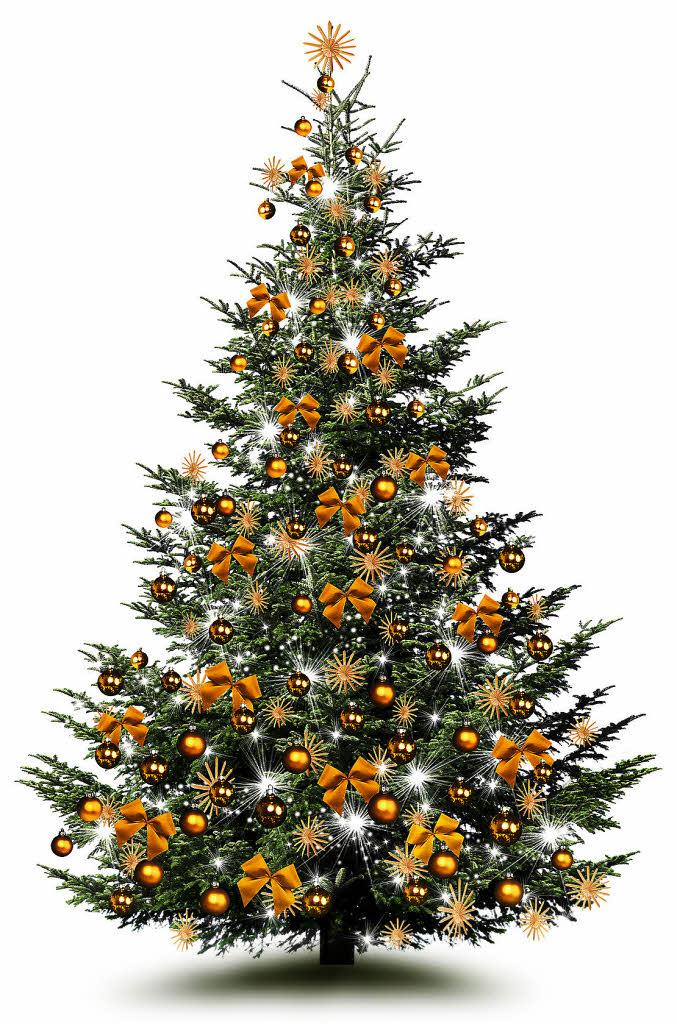panorama o tannenbaum die besten tipps damit der weihnachtsbaum lange sch n ist badische. Black Bedroom Furniture Sets. Home Design Ideas