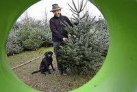 Warme Weihnachten: Es droht das gro�e Nadeln