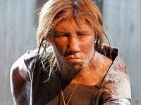 Neandertaler haben unser Immunsystem beeinflusst