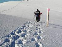 Schneeschuhwandern: 34 Touren auf dem Feldberg