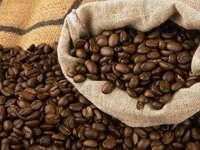 Ist Kaffee trinken sch�dlich f�r die Gesundheit?