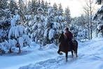 Fotos: Winterzauber im Elz- und Simonswäldertal