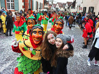Fotos: Der Narrenumzug in Merdingen