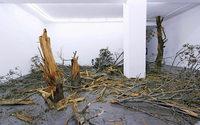 """Henrik H�kansson mit """"A Tree (Suspended)"""" im Kunstverein Freiburg"""