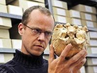 Arch�ologen graben Knochen aus dem Mittelalter aus