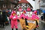Fotos vom Narrenumzug in Schluchsee