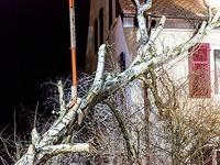 Fotos: Baum kracht auf Wohnhaus - Sturm in Freiburg