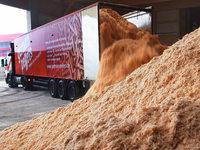 Pleite von German Pellets wird zum Wirtschaftskrimi