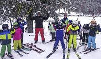 Droht der alpine Skisport seine Basis zu verlieren?