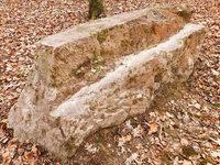 War der Stadtwald Schauplatz geheimnisvoller Rituale?