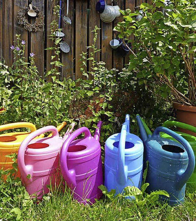 Wer keine Gießkannen schleppen will, nutzt eine Bewässerungsanlage.   | Foto: Sattelberger