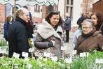 Fotos: Blumen und Antiquit�ten in Endingen