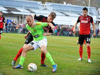 SC Freiburg und FC Schaffhausen trennen sich 1:1
