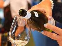 M�llheim: Die Weinhauptstadt des Markgr�flerlandes