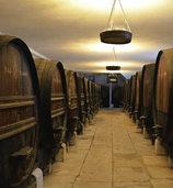 FLUCHTPUNKT: Wein aus einer anderen Zeit