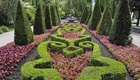 Sommerblumen im Europa-Park