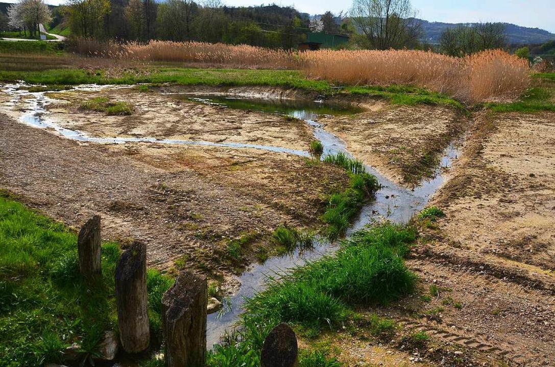Die Beckenlandschaft wurde so modellie...as  Wasser möglichst langsam abfließt.  | Foto: Manfred Frietsch