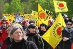 Fotos: 1200 Atomkraftgegner demonstrieren bei Sasbach gegen Fessenheim