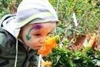 Fotos: Fr�hlingsfest der Stadtg�rtnerei am Mundenhof