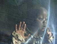 Malaria ist auf dem Rückzug