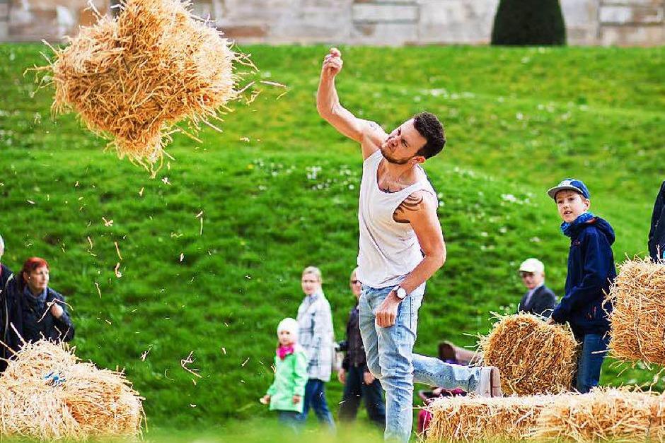 Einer der Teilnehmer wirft einen der eckigen Ballen. Fliiiieg! (Foto: dpa)