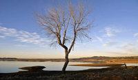 El Ni�o sorgt weltweit f�r katastrophale D�rren