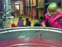 Bezirkskellerei l�dt zu Kinderkellerf�hrungen – es gibt Traubensaft zu probieren, keinen Wein nat�rlich