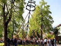 �bersicht: Alle Maihocks in S�dbaden