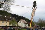 Fotos: Maibaumstellen und Umzug in Bleibach