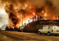 Zehntausende fliehen vor dem Feuer