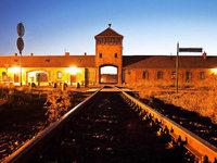 Erinnerung an Auschwitz: Die letzten Zeugen