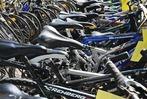 Fotos: Fahrradversteigerung in Rheinfelden