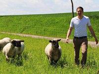 Schafhalter auf der Baar haben Angst vor dem Wolf