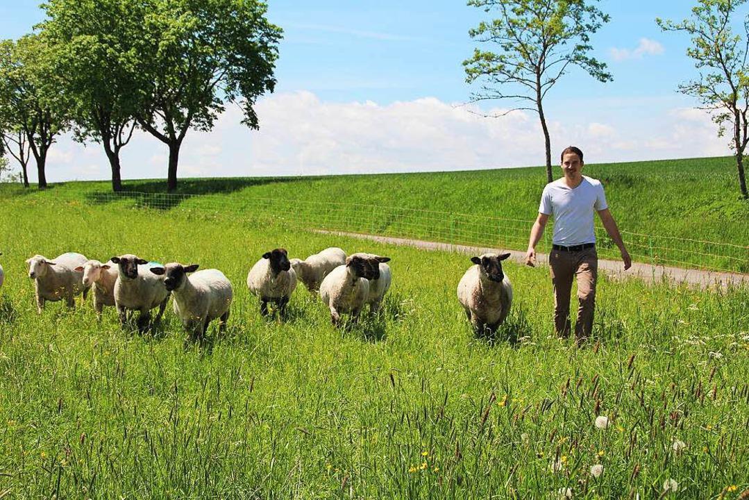 Oliver Schwab aus Aasen ist Schafhalte...r momentan noch viele offene Fragen.    | Foto: Jakober