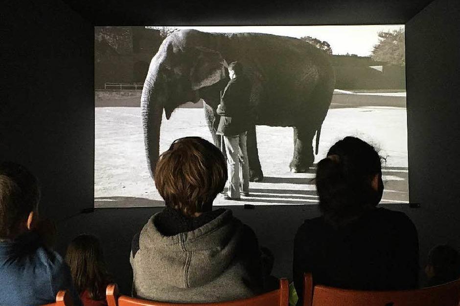 Der Film, den die Kinder hier anschauen, zeigt, wie Blinde einen Elefanten ertasten. Sie erzählen dabei, wie sich die Elefantenhaut für sie anfühlt. (Foto: Sonja Zellmann)