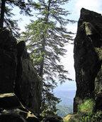 Kandel-Bergtour mit Geschichten mit Rosemarie Riesterer