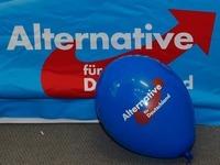 Die AfD unter Quarant�ne: Das ist kein Ausweg!