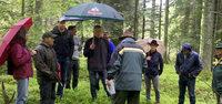 In den n�chsten zehn Jahren soll im Wald weiterhin kr�ftig geerntet werden
