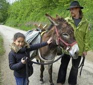 Fl�chtlingskinder gehen auf Tour mit Eseln vom Kunzenhof