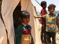 Kann die irakische Armee Falludscha vom IS befreien?