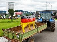 Ortenauer Milchbauern haben Offenburger Kreisel blockiert