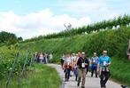 Fotos: 14. kulinarische Weinwanderung in Oberrotweil