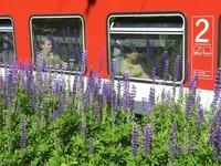 Die Dreiseenbahn soll ab Samstag wieder fahren