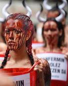 Das Blut der Stiere