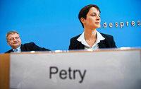 Machtkampf bei der AfD – Meuthen und Petry im offenen Clinch