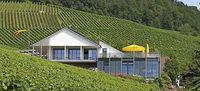 Weinfest künftig im Juli