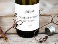Weingut Claus Schneider: Mit Sorgfalt und Begeisterung
