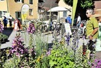 Fotos: 5. Kaiserstuhl-Tuniberg-Tage in Nimburg