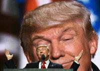 Donald Trump schaltet einen Gang zur�ck