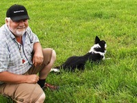 H�tehunde-Meisterschaft:  Sieger aus dem Norden